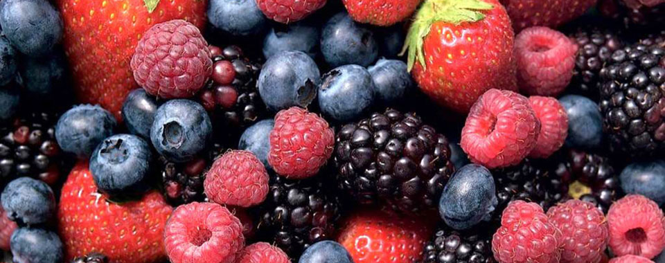 Nutritional Benefits with Berries at St.Lucia Resorts BodyHoliday