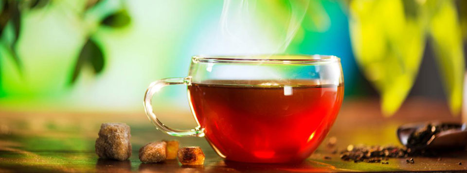 Kapha-Balancing-Water-or-Tea fun at St.Lucia Resorts bodyholiday